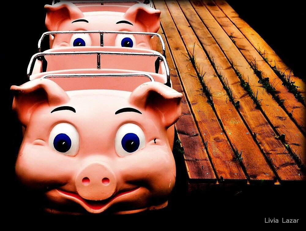 [no swine flu in here, just lots of fun] by Livia  Lazar