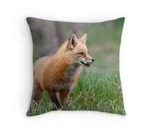 Fox Biscuits Throw Pillow