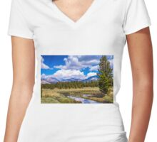 RIVER THROUGH THE MEADOW Women's Fitted V-Neck T-Shirt