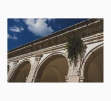 Of Arches and Plants - Certosa di San Giacomo, Capri, Italy T-Shirt