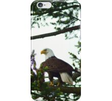 Watchful Perch iPhone Case/Skin