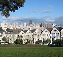 Painted Ladies by jchoy