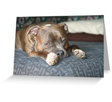 Do I have to get up? Greeting Card