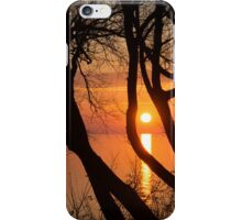 Sunrise Through the Willows - Lake Ontario, Toronto, Canada  iPhone Case/Skin