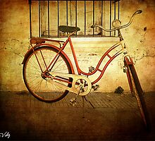 Old Bike by Rous