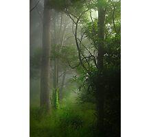Good morning, sunshine #2 Photographic Print
