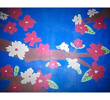 Floral in Red, White, and Blue Photographic Print