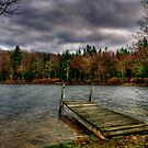 A POCONO SHORELINE  by MIKESANDY