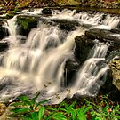 LEAVITT FALLS SPRING number2 by MIKESANDY
