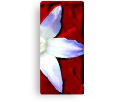 Blue on Red Canvas Print