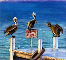 Pelican Trio in the Florida Keys by DonnaKazo