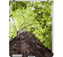Squirrel's Point of View iPad Case/Skin