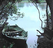 Mangrove Mooring by Graham E Mewburn