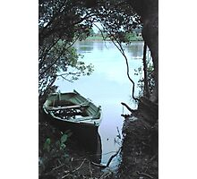 Mangrove Mooring Photographic Print