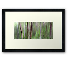 Woodlands Framed Print