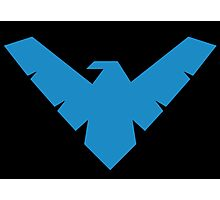 nightwing Photographic Print