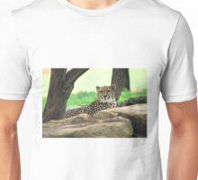 Cheetah On The Rocks Unisex T-Shirt