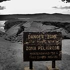 Danger Zone by Carrie Bonham