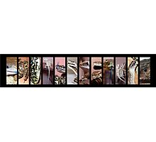 Reptiles Strip Black Collage Photographic Print