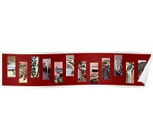 Reptile Strip Red Collage Poster