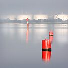 Red Markers - Corio Bay by Hans Kawitzki