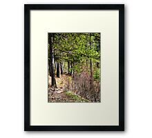 A Difficult Path Framed Print