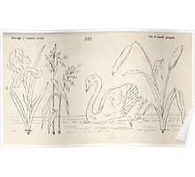 Briggs & Company Patent Transferring Papers Kate Greenaway 1886 0085 Poster