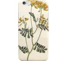 The Botanical magazine, or, Flower garden displayed by William Curtis V5 v6 1792 1793 0086 Coronilla Valentina, Rue Leaved Coronilla iPhone Case/Skin