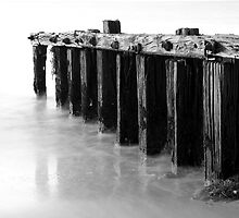 The Groynes by Darryl Leach