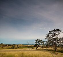 Wide Open Spaces by Terry Williams