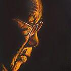 The Dalai Lama in Profile by christo wolmarans