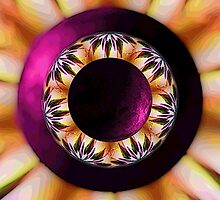 Mandala ~ Finding The Center by Leinaala Mitchell