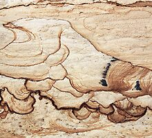 Wave captured in stone - Australia by Philomena