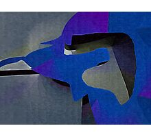 blue dog Photographic Print