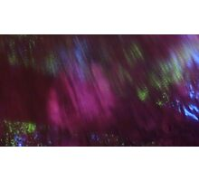 Back to the vivid forest n°1 Photographic Print