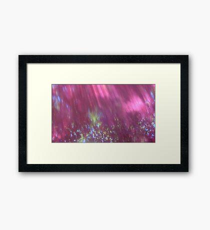 Back to the vivid forest n°2 Framed Print