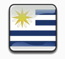 Uruguay Flag, Icon by tshirtdesign