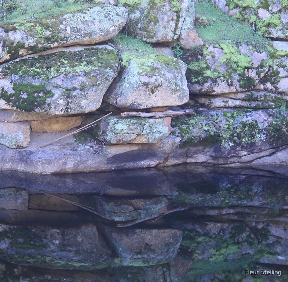 rock pool by Fleur Stelling