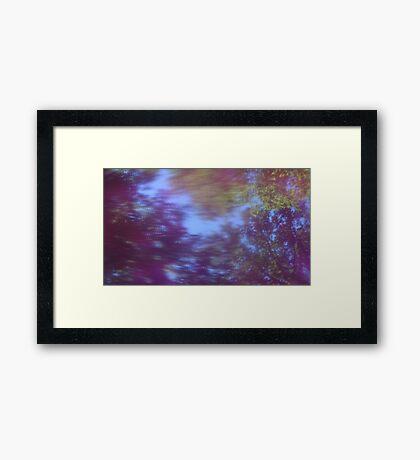 Back to the vivid forest n°5 Framed Print