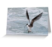 Catching fish Greeting Card