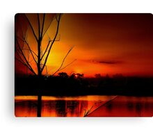 Red Night in The Everglades Canvas Print