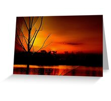 Red Night in The Everglades Greeting Card