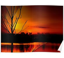 Red Night in The Everglades Poster