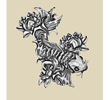 Gray Koi fish Photographic Print