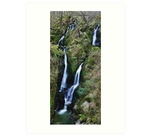 Stock Ghyll Force Art Print