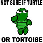 Confused Turtle by Tinyevilpixie1