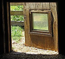Dutch Door  by Monnie Ryan