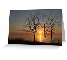 Three Trees and the Sun Greeting Card