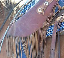 The Wild West - Fringe Benefits by © Betty E Duncan ~ Blue Mountain Blessings Photography