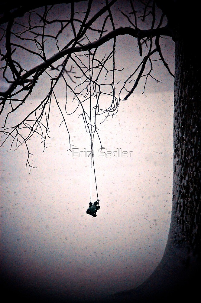 Swinging in a Snow Storm by Erin  Sadler